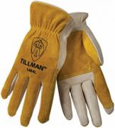 Tillman1464_02240317