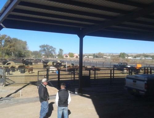 Barn & Corrals